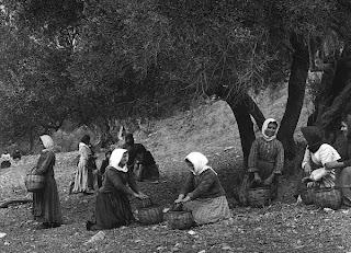 """Το σύστημα των """"αγροσυνεργειών"""" - Ένα άλλο μοντέλο ανάπτυξης για την Ελλάδα"""
