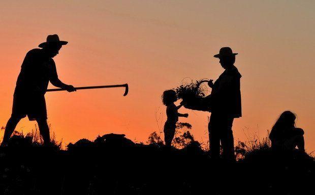 Ministério Público do Trabalho defende rejeição integral ao projeto que regula o trabalho rural