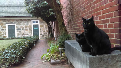 Pluto and Edgar on a stone bench at the Poe Museum