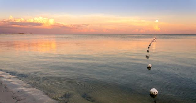 Las 4 mejores playas de Cedar Key
