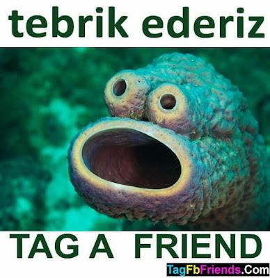 Congratulations In TURKISH