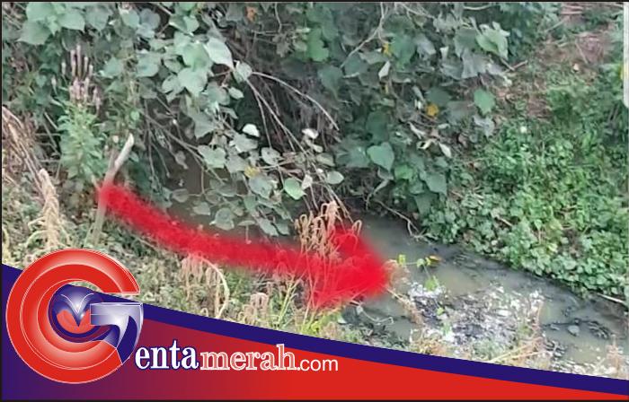Limbah Pabrik PT BW Tuba Dibuang ke Sungai, Bau Tak Sedap Hantui Warga