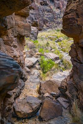Wanderung zu den Wasserfällen im Barranco del Toro | San Agustín/Maspalomas | Wandern auf Gran Canaria 15