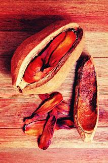 mahogany seed