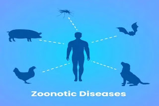 World Zoonoses Day 2021: Why is World Zoonoses Day celebrated on 6 June?