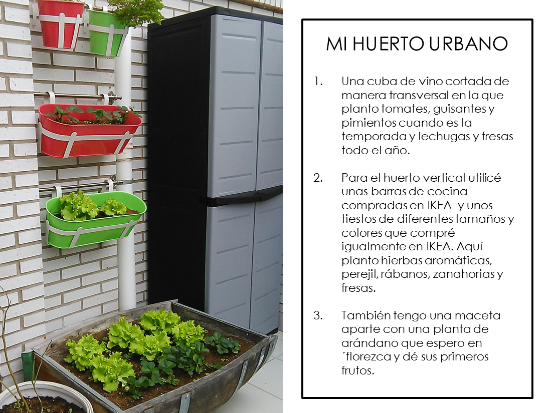 Como crear un huerto urbano en la terraza