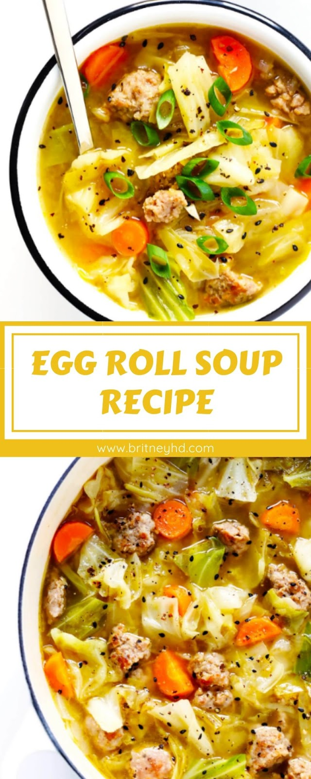 EGG ROLL SOUP RECIPE