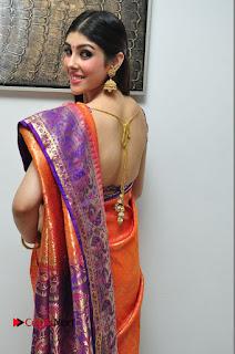 Aditi Singh Pictures in Saree at Kalamandir 6th Anniversary Celebrations  0049.JPG