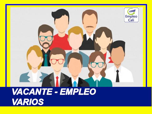 Oferta de Trabajo y Empleo en Cali