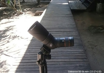 Celestron ED lens micro spotting scope
