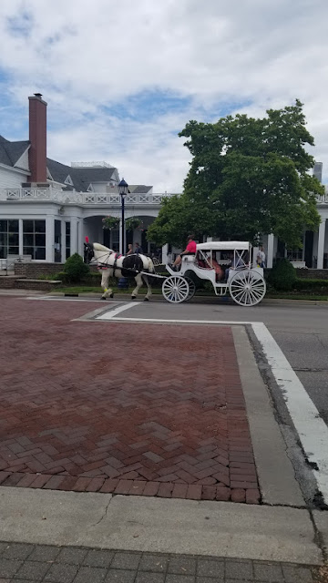 Horses in Frankenmuth, MI