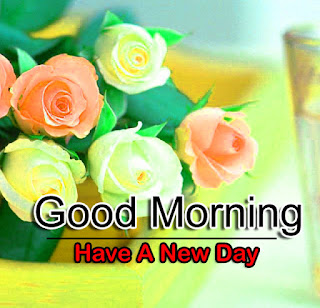 New Good Morning 4k Full HD Images Download For Daily%2B30