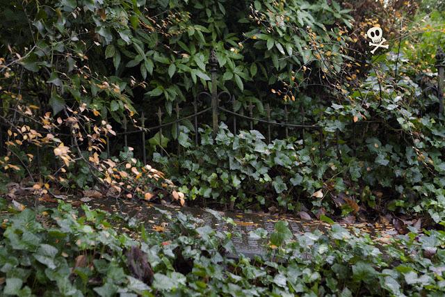 Una verja devorada por el verde en Huis te Vraag