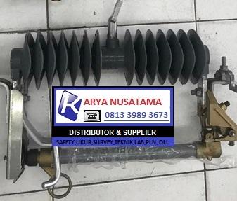 Jual Lightning Arrester Polymer Bosung 36KV di Padang