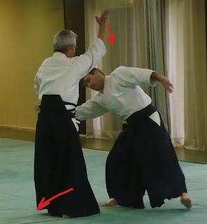 Shiho nage  yokomen uchi