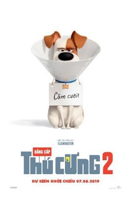 Xem Phim Đẳng Cấp Thú Cưng 2 - The Secret Life of Pets 2