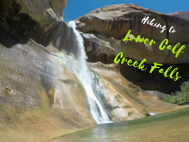 The Ultimate Guide - Dog Friendly Hikes in Escalante, Utah! Hike to Lower Calf Creek Falls
