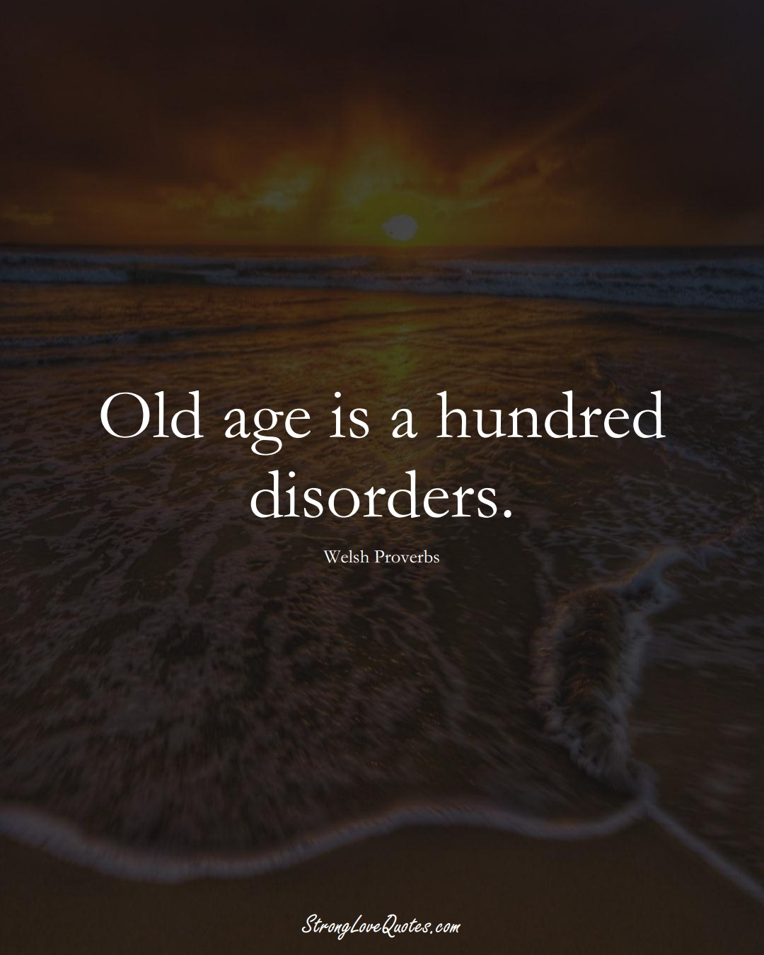 Old age is a hundred disorders. (Welsh Sayings);  #EuropeanSayings