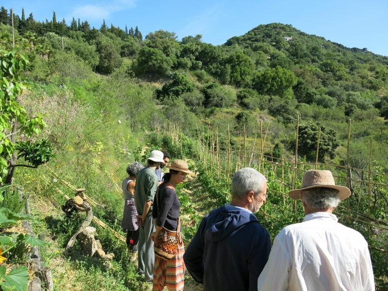 Grupo visitando huerta ecológica en Gaucín. Serranía de Ronda. AEA Bosque Animado