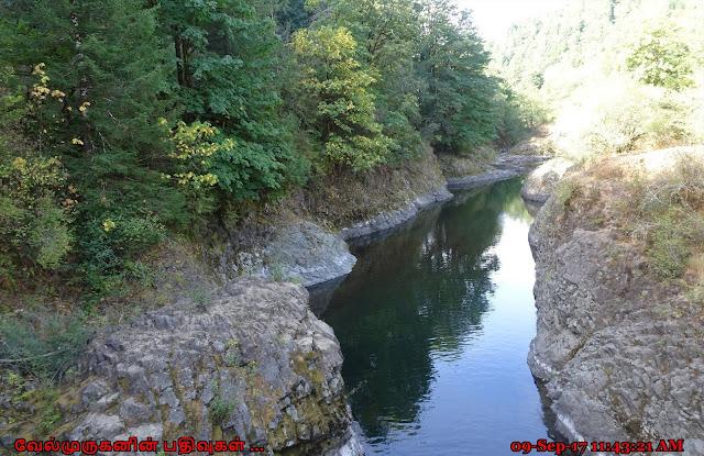 Wilson River Tillamook