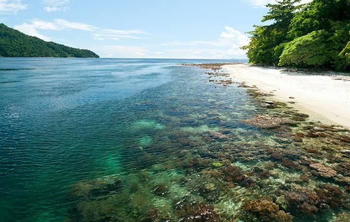 pulau Dayan