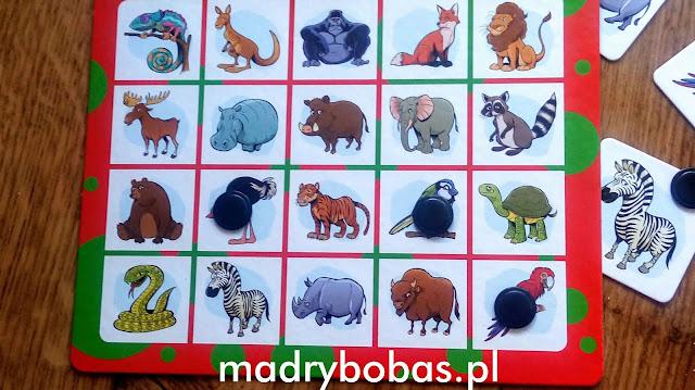 Jaki zniknął zwierz gra dla dzieci alexander