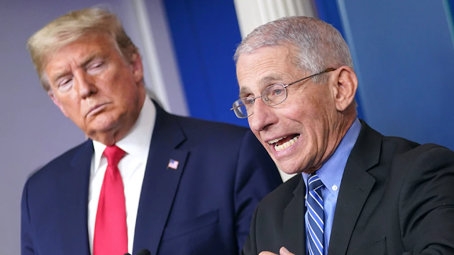 Fauci Now Wants Trump's Help After Taking Repeated Shots At The Former President Following The Election