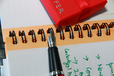Sheaffer Fountain Pen