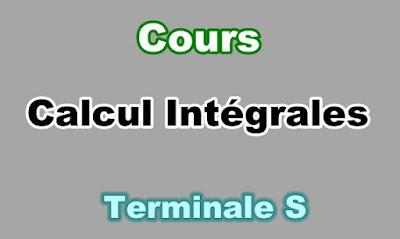 Cours de Calcul d'Intégrales Terminale S PDF.