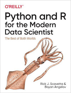 Python and R for the Modern Data Scientist PDF