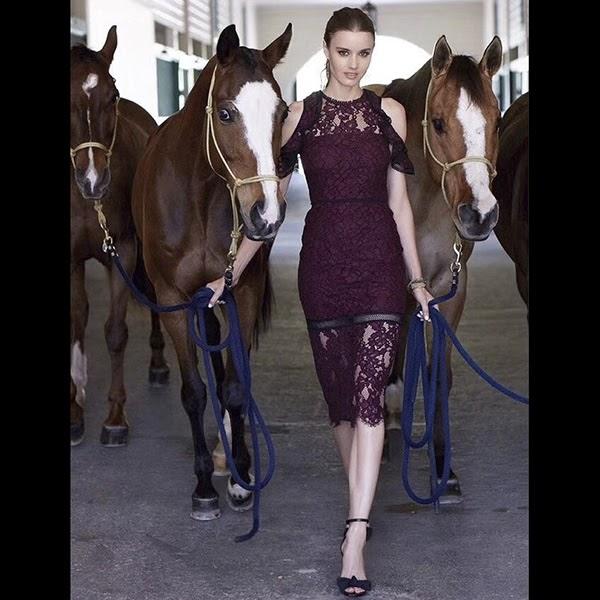 $542 ALEXIS Evie Plum Cold Shoulder Lace Dress Burgundy Wedding XS S M L