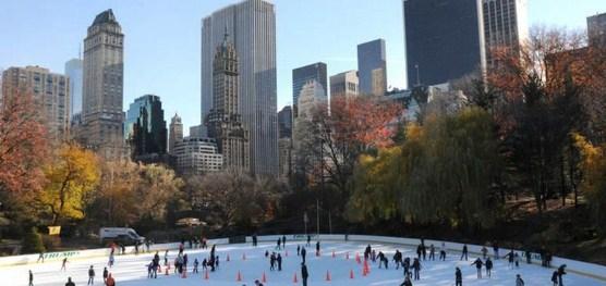 Konsep Central Park New York Akan Di Terapkan Pada Monas