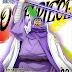 [BDMV] One Piece 17th Season Dressrosa Hen Vol.29 [161102]