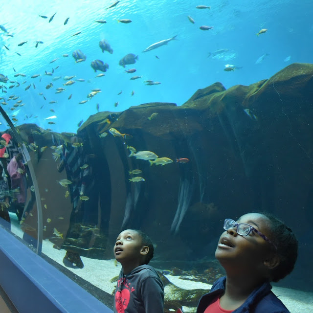 10 Things to Do in Atlanta This Labor Day Weekend  via  www.productreviewmom.com