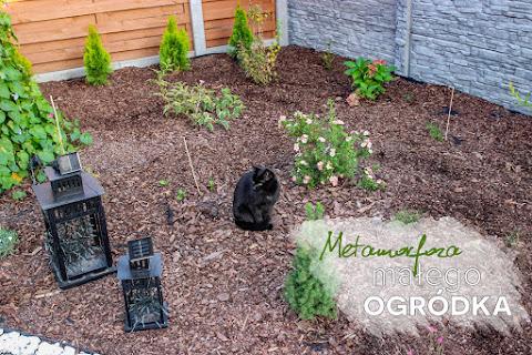 Metamorfoza mojego małego ogródka ♡ - czytaj dalej »