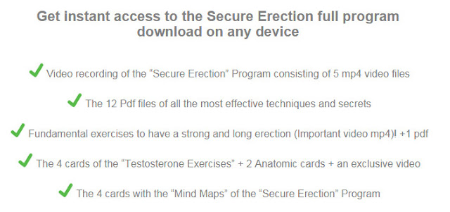 Secure Erection program, Secure Erection pdf book, Secure Erection Andrew Beck, Secure Erection review,