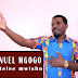 Download Audio: Emmanuel Mgogo | Usipotelee Mwisho