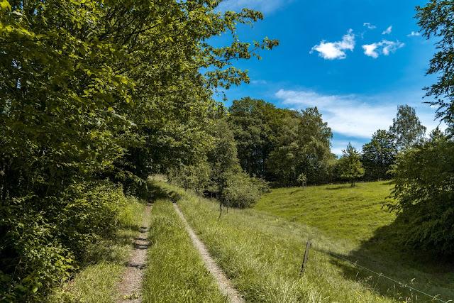 Talsperrenweg Siegburg | Wahnbachtalsperre | Erlebnisweg Sieg | Naturregion Sieg 09