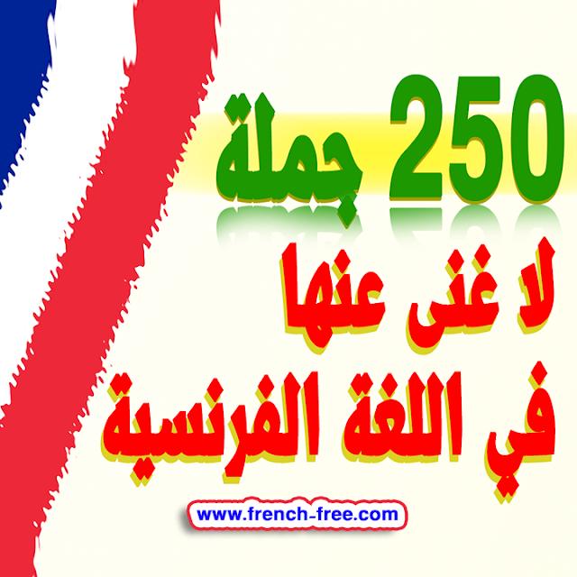 250 جملة لا غنى عنها لتعلم اللغة الفرنسية بسرعة الأكثر إستعمالا بالنطق للمبتدئين Parler en français