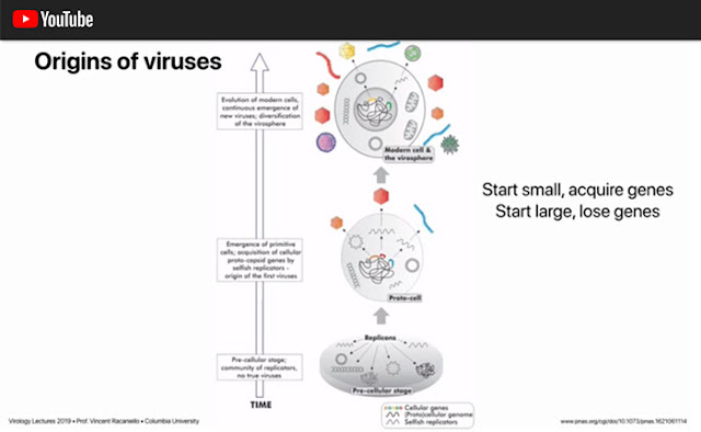 Origin of viruses as discussed by Columbia Professor of Virology (Source: Vincent Racaniello)
