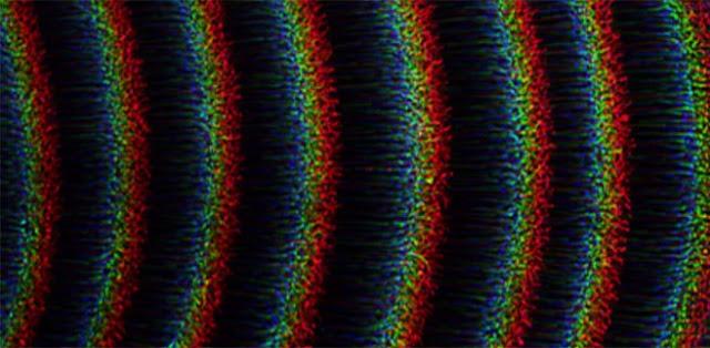 A self-excited dust density wave  CREDIT: Jaiswal et al.