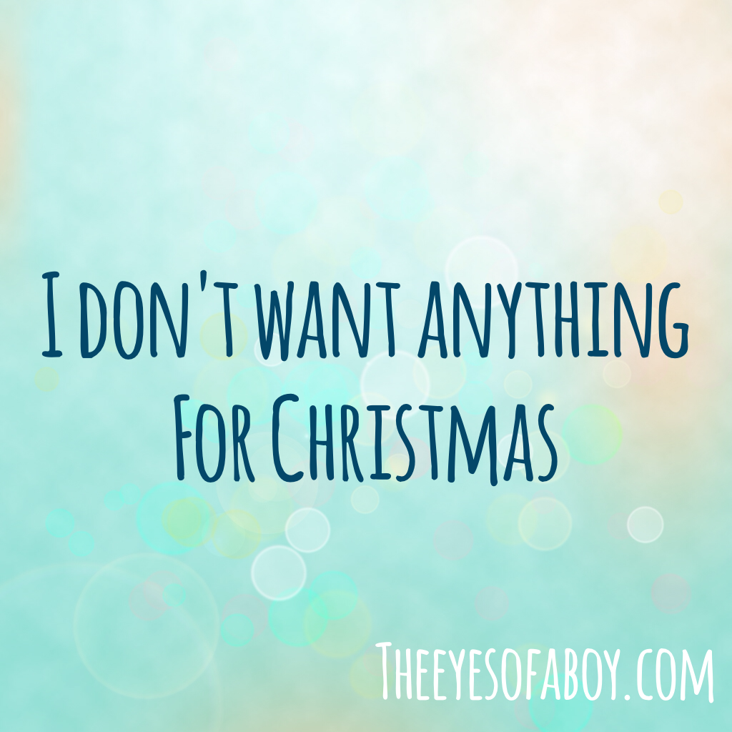 I Dont Want Anything For Christmas Wildly Charmed