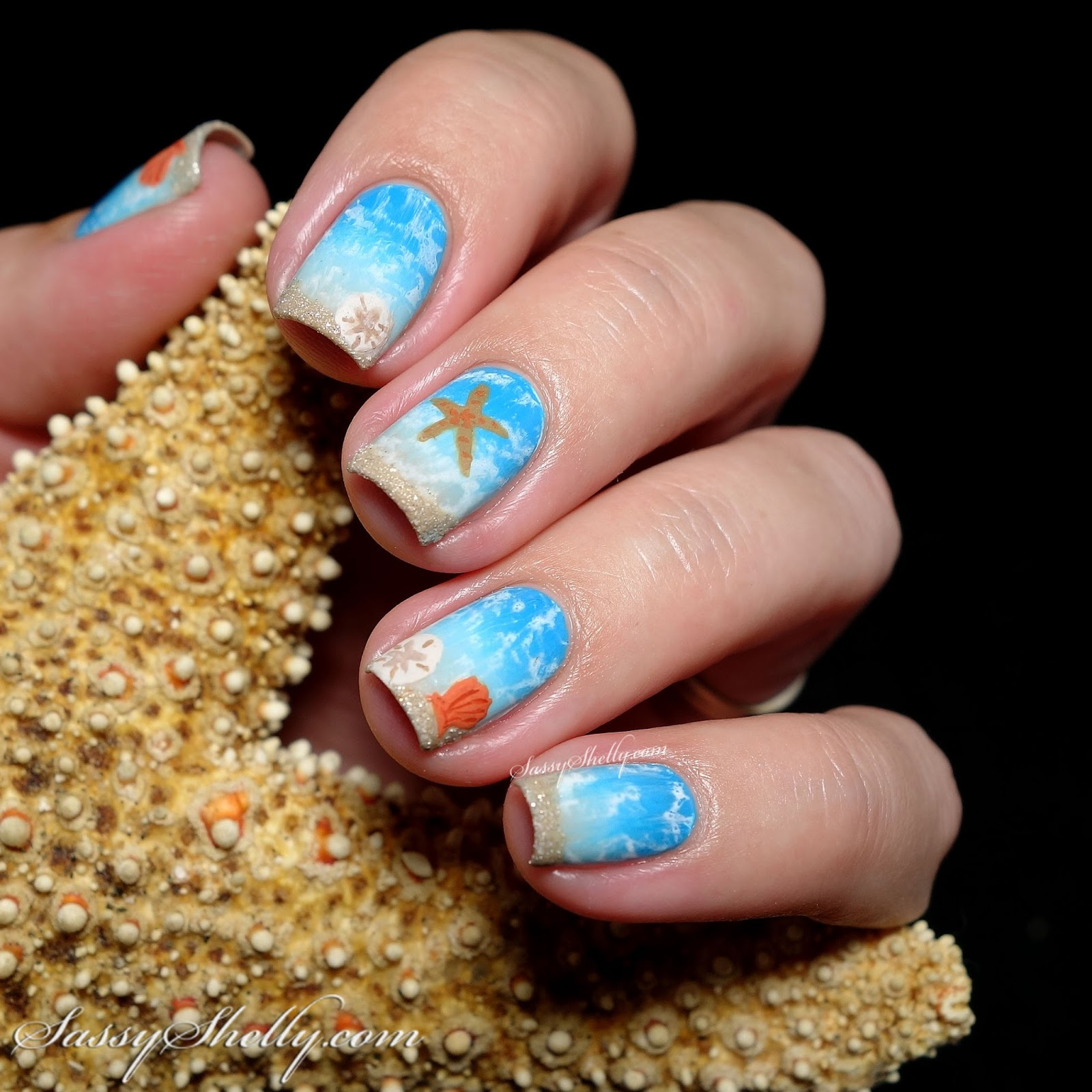 Digit-al Dozen DOES Summer - Starfish & Sand Dollars ...