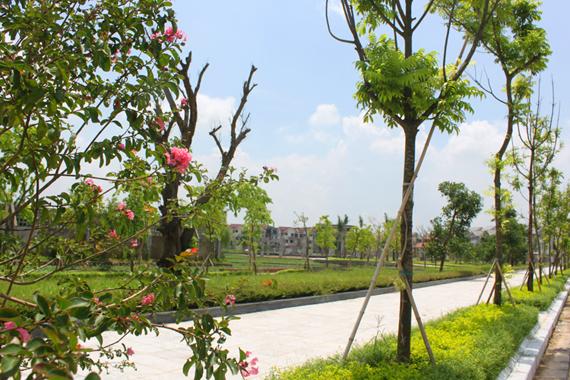Công viên nội khu chung cư The Park