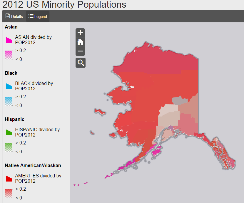 US Minority Populations
