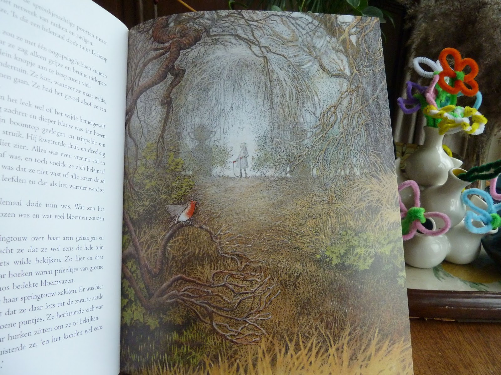 Anita 39 s dagboek de geheime tuin frances hodgson burnett for De geheime tuin boek