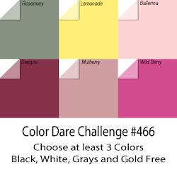 "CHALLENGE #466 ""6 Pack"""