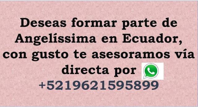 Informes Angelíssima Ecuador