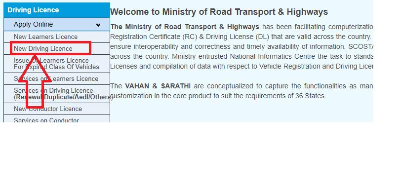 apply for driving license stpe