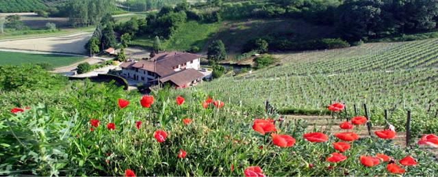 Azienda Agrizola Malvira Roero Piemonte